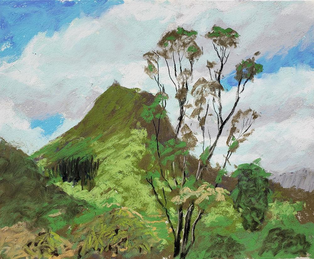 Maunawili by Roger Tinius